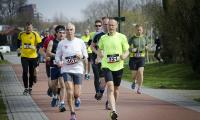 Hans Geerlings_Vlinderloop03b.jpg