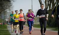 Hans Geerlings_Vlinderloop05b.jpg