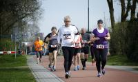 Hans Geerlings_Vlinderloop06b.jpg