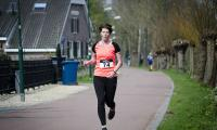 Hans Geerlings_Vlinderloop10b.jpg